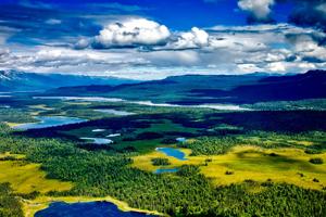 miniatura-imagen-alaska-parque-nacional-denali